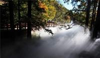 鹏城园林造雾设备 高压造雾设备 人造雾设备 人造雾造景