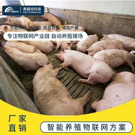 智慧养猪设备智慧养猪场 智能化养猪