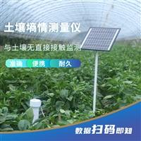 管式墒情仪土壤水分测量仪