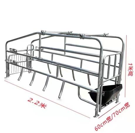 产家热卖 落地式母猪产床 自产自销 物美价廉 吉牧