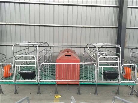 国标2.5热镀锌 母猪分娩栏 养猪设备 吉牧养殖设备
