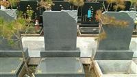天津林园公墓出售