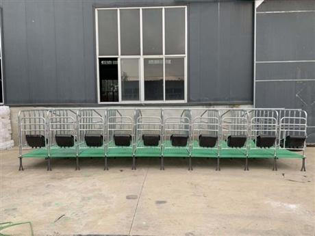 定制定位栏 养猪设备 定位栏厂家 吉牧养殖设备
