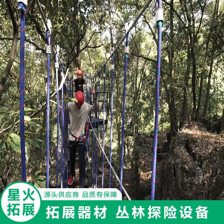 丛林拓展设备 丛林秋千桥 丛林探险
