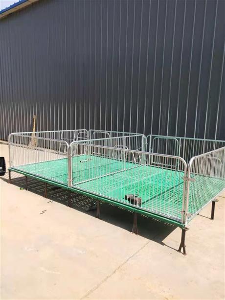 全复合双体仔猪保育床 小猪单体保育床 热镀锌 保育栏设备