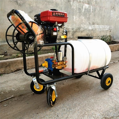 养牛场喷雾消毒机 移动式猪场消毒机 宏晨电机汽油消毒机