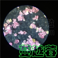 蔓越莓粉干燥设备,果疏粉压力喷雾造粒干燥机-常州永昌制粒