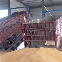 后翻式卸车机 汽车液压卸车机 广泛用于饲料厂