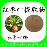 红枣叶提取物红枣叶粉 水提醇提 红枣叶提取液 红枣叶速溶粉