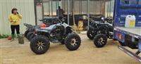 Th沙滩车-Th哈尔滨200沙滩车 出口版沙滩车 亲子自动200轴传功沙滩车厂家