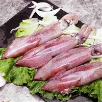 湖北海鲜市场鱿鱼批发价格