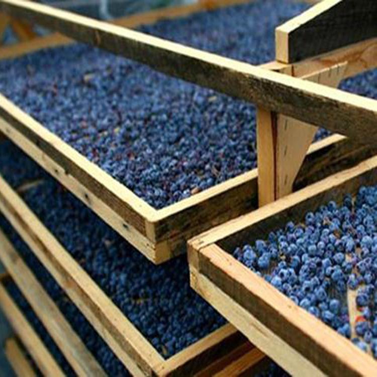 蓝莓烘干机 果蔬烘干机 水果烘干机 蓝莓热泵烘干机