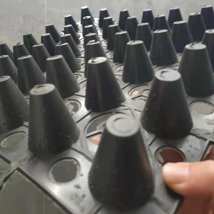 供应新疆25高塑料排水板 聚乙烯凹凸排水板 车库顶板种植排水板