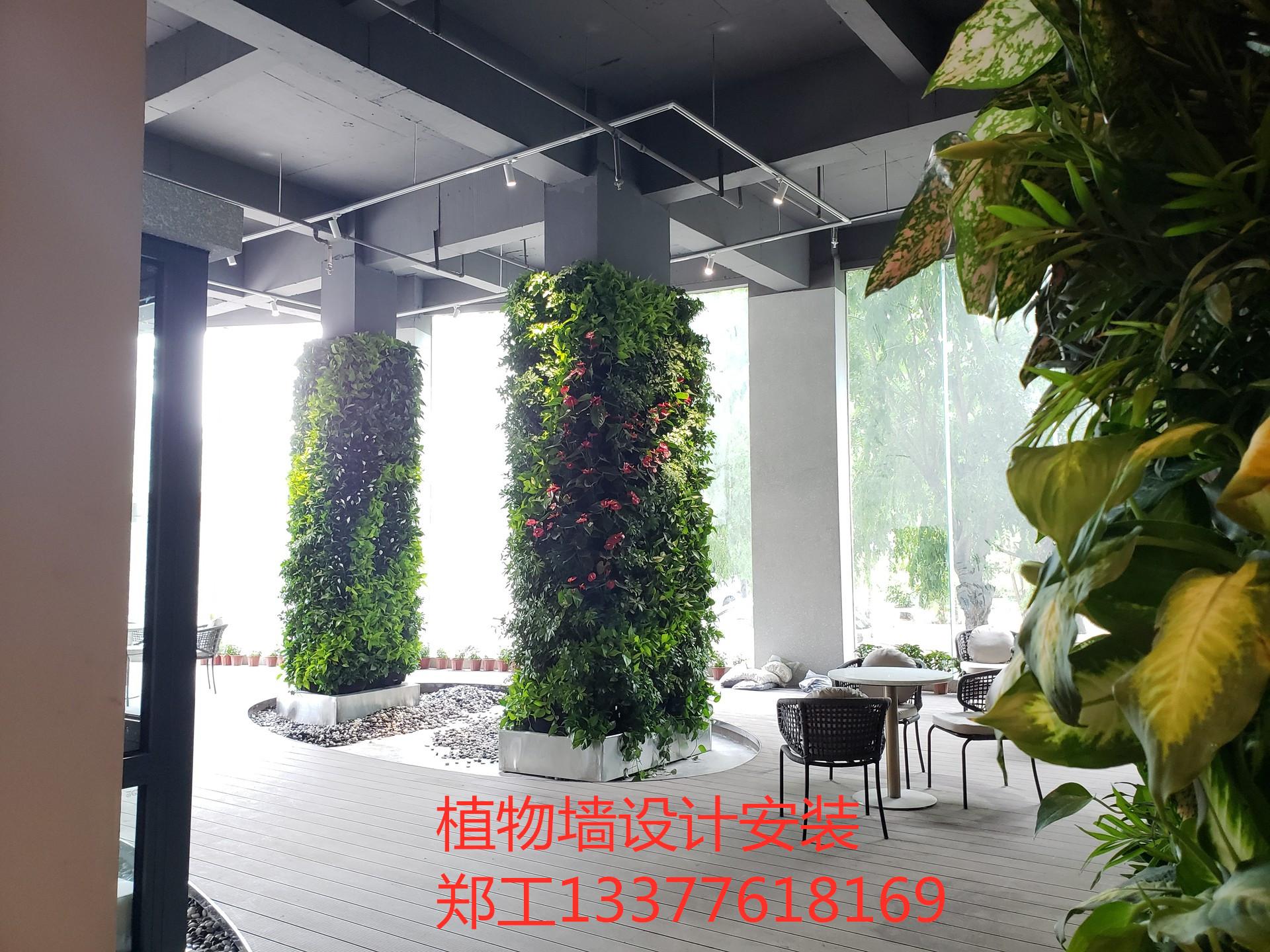 河源大厅垂直绿墙案例分享